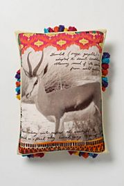 Safari Study Pillow, Gazelle