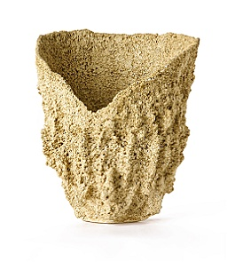 Anthropologie - :  container sea garden planter