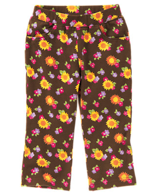 Chocolate Brown Blossom Sunflower Knit Pant by Gymboree