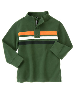 Forest Green Pieced Stripe Pullover by Gymboree