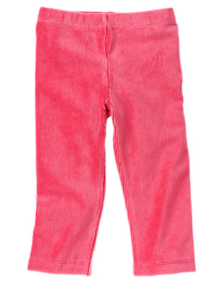Toddler Girls Autumn Pink Velour Legging by Gymboree