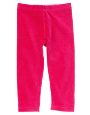 Toddler Girls Chic Pink Velour Legging by Gymboree