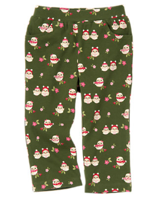 Juniper Green Owl Owl Knit Pant by Gymboree