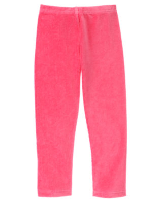Girls Cozy Pink Velour Legging by Gymboree