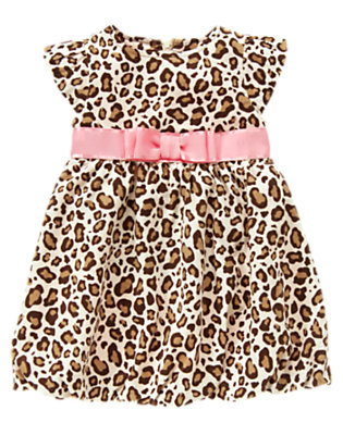 Toddler Girls Ivory Leopard Bow Leopard Bubble Dress by Gymboree