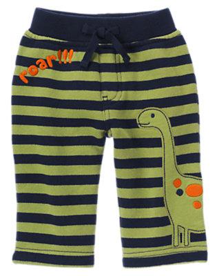 Baby Dino Green Stripe Roar Dino Stripe Knit Pant by Gymboree