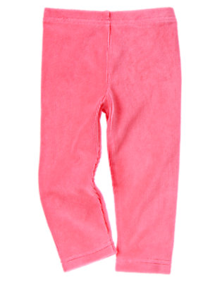 Winter Pink Velour Legging by Gymboree