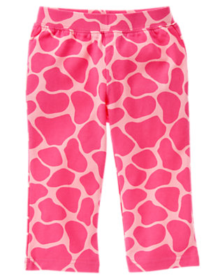Loveable Pink Giraffe Giraffe Knit Pant by Gymboree