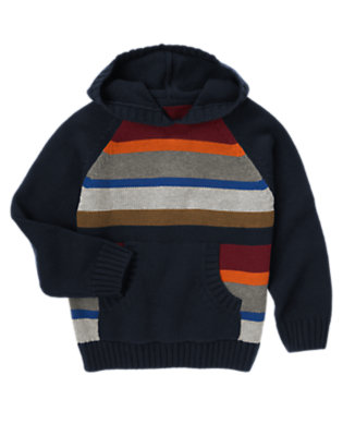 Navy Stripe Hooded Sweater by Gymboree