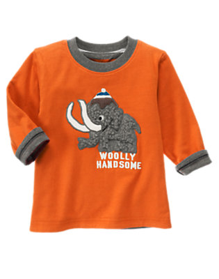 Orange Ochre Woolly Handsome Stripe Reversible Tee by Gymboree