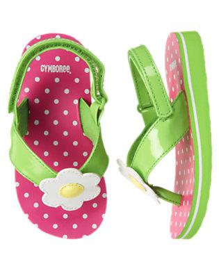 Toddler Girls Daisy Pink Dot Flower Dot Flip Flop Sandal by Gymboree