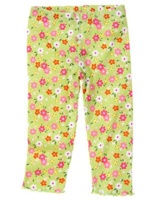 Toddler Girls Green Tea Blossom Blossom Legging by Gymboree