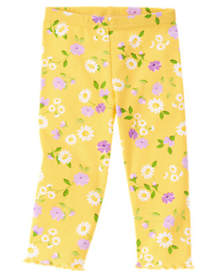 Toddler Girls Daisy Yellow Floral Daisy Violet Legging by Gymboree