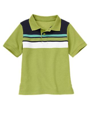 Spring Green Pieced Stripe Pique Polo Shirt by Gymboree