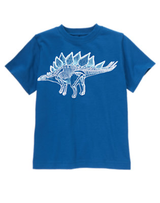 Boys Dinosaur Blue Stegosaurus Tee by Gymboree
