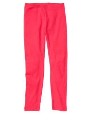 Girls Poppy Pink Legging by Gymboree