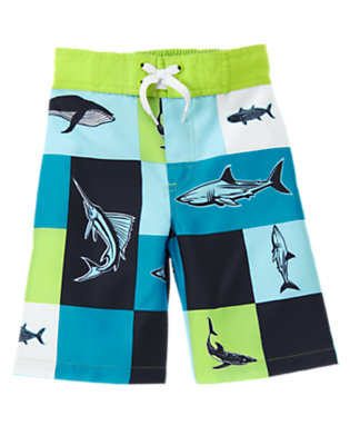 Boys Lime Green Patchwork Shark Patchwork Swim Trunk by Gymboree