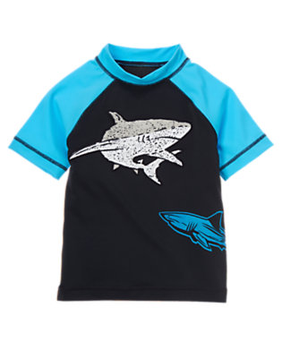 Boys Gym Navy Shark Rash Guard by Gymboree