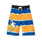 Shark Stripe Swim Trunk