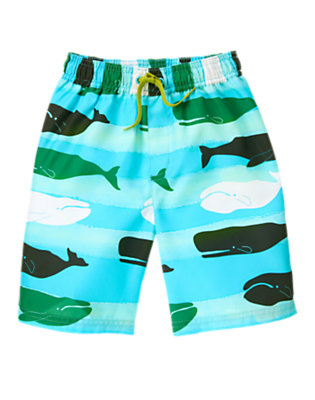 Boys Aqua Stripe Whale Swim Trunk by Gymboree