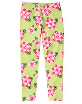 Girls Green Tea Floral Hydrangea Legging by Gymboree