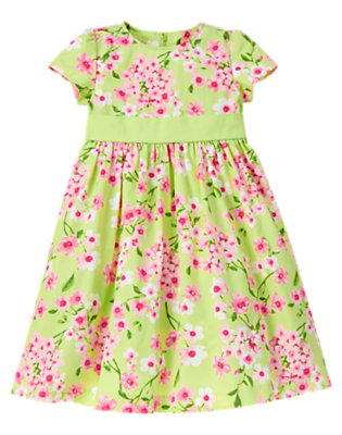 Girls Bright Green Blossom Flower Sash Dress by Gymboree