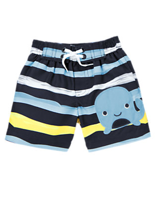 Baby Navy Stripe Whale Stripe Swim Trunk by Gymboree