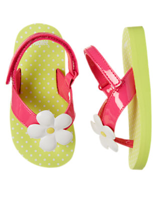 Bright Lime Green Flower Dot Flip Flop Sandal by Gymboree