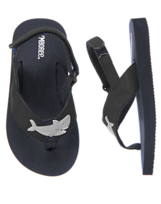 Toddler Boys Midnight Navy Shark Flip Flop by Gymboree
