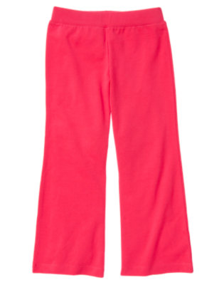 Girls Poppy Pink Flare Pant by Gymboree