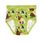 Toucan Frog Brief