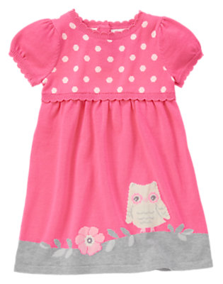 Toddler Girls Berry Pink Owl Sweater Dress by Gymboree