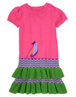 Girls Plume Pink Bird Colorblock Sweater Dress by Gymboree