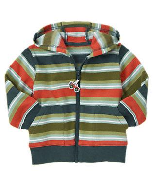 Moss Green Stripe Stripe Zip Hoodie by Gymboree