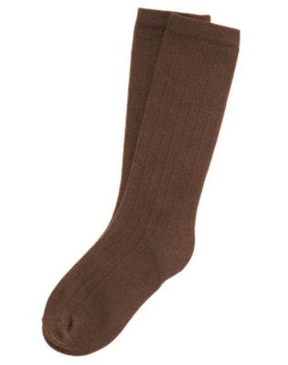 Girls Brown Knee Sock by Gymboree