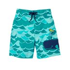 Waves and Whale Swim Trunks