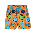 Funny Fish Swim Trunks