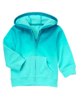 Toddler Boys Ocean Teal/Bright Aqua Ombre Terry Hoodie by Gymboree