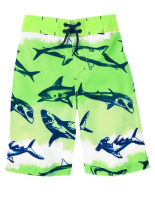 Shark Board Shorts