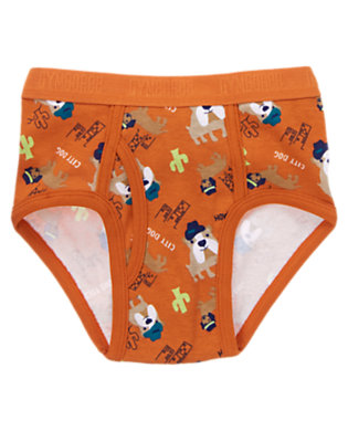 Toddler Boys Canyon Orange City Dog & Country Dog Brief by Gymboree