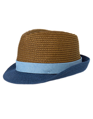 Toddler Boys Blue Sky Colorblocked Fedora by Gymboree