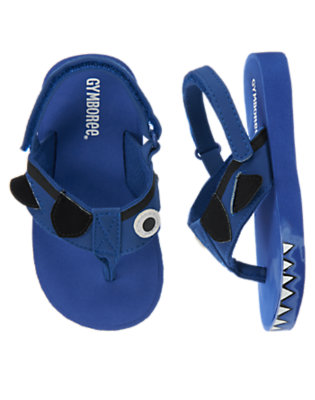 Toddler Boys Deep Blue Sea Pirate Shark Flip Flop by Gymboree