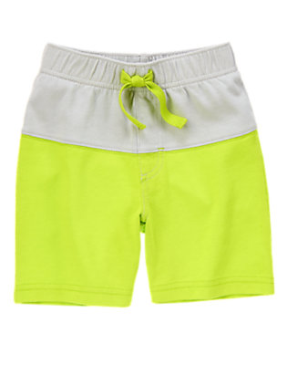 Toddler Boys Leafy Lime Colorblocked Shorts by Gymboree