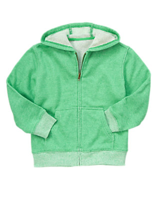 Boys Sea Green Zip Terry Hoodie by Gymboree