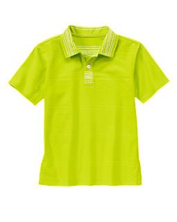 Striped Collar Polo Shirt