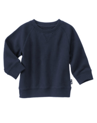 Toddler Boys Gym Navy Solid Pullover by Gymboree