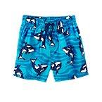 Whale Swim Shorts