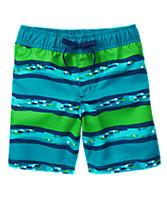 Geo Striped Swim Shorts