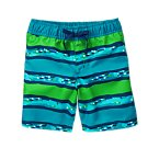 Geo Striped Swim Shorts