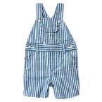 Striped Chambray Shortalls
